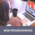 Crash Course on Web Programming with C# / VB.NET and MVC