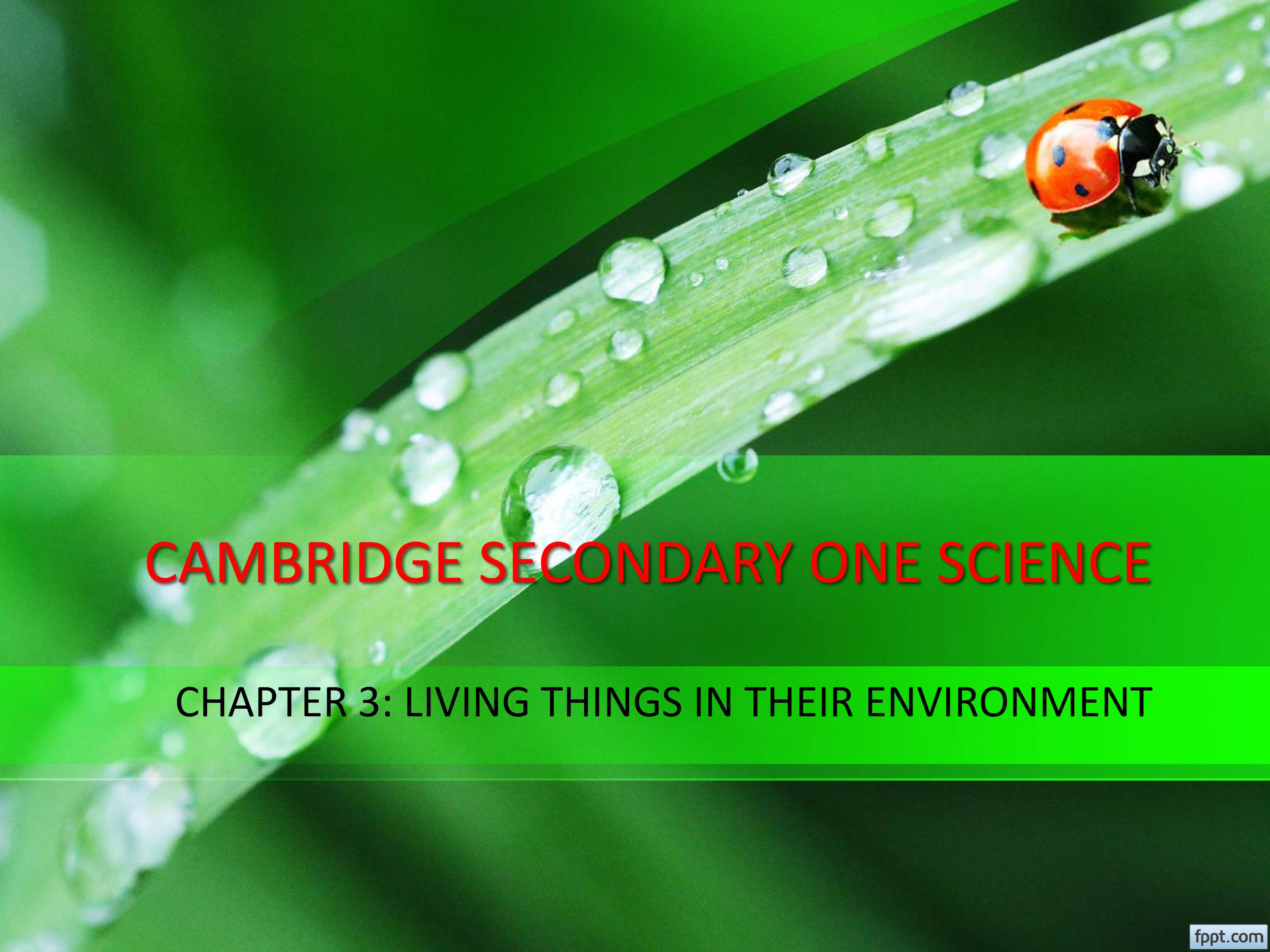 PPT on Cambridge Science of Year 7